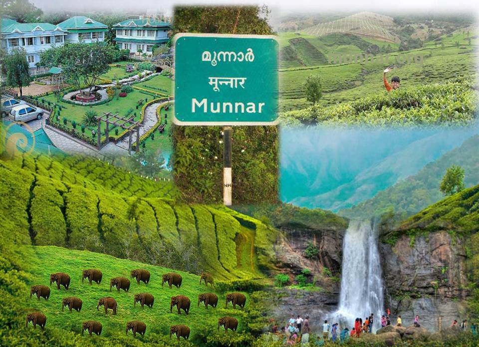 Munnar- Honey Moon Locatios
